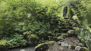 Sammalten peittämät portaat nousevat ylös rinnettä, ympärillä saniaisia ja vehreää kasvustoa, ylhäällä kivinen paasi.