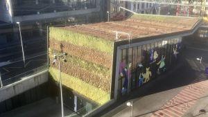 En byggnad i Lausanne täckt med gräs på taket och ena väggen.