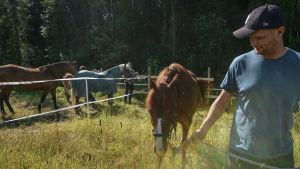 Kyösti Linna leder häst över äng.