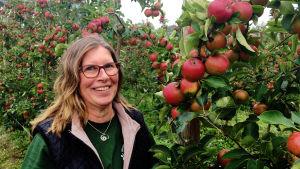 Karin Arfman, en medelålders kvinna med brunt hår och glasögon, står vid äppelodlingarna vid Söderlångvik gård.