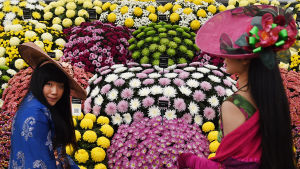 Årets blomstertrender i Chelseas vårutställning