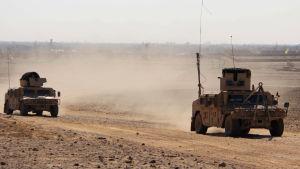 Kaksi sotilasajoneuvoa aavikolla.