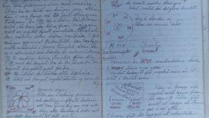 närbild av ett uppslag i en av Hilma af Klints anteckningsböcker.