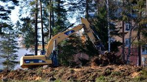 Grävmaskin röjer skog i tätort.