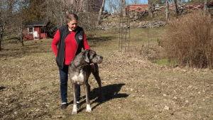 Tuulikki Wahe-Rohrbach med sin danska dog ute i trädgården på Korpo gård