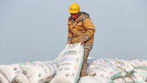 Hamnarbetare hanterar säckar med sojabönor i hamnen i Nantong i Kina.