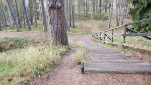 stig bredvid trappa i skogsbacke