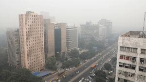 Tjock dimma över byggnader i New Delhi, Indien