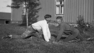 """Två män leker leken """"Dra pissmyra"""". Bilden är tagen 1932 i Terjärv."""