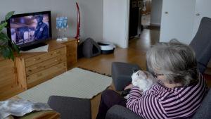 bild på en kvinna som tittar på tv med hennes katt