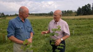 Anders af Heurlin och Lasse Ingman