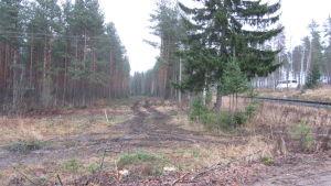 Förbindelsevägen till den planskilda korsningen i Svedja ska byggas strax norr om järnvägen.