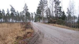 Albackavägen som korsar järnvägen i Karis är brant.