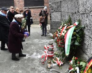 Tidigare Auschwitzfångar vid den så kallade dödsväggen på 70-årsdagen av befrielsen.