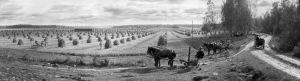 I. K. Inha: Mustialan maatalousoppilaitos, 1899.