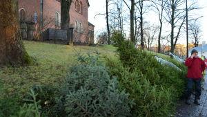 Julgransförsäljning vid Åbo domkyrka.