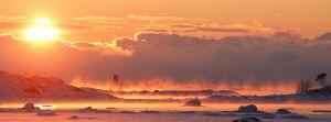 Solen går ner i sjöröken vid svanarnas nattkvarter ute vid Uddskatan i Hangö.