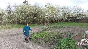 Maria Petrovna vid sitt jordgubbsland och sina körsbärsträd