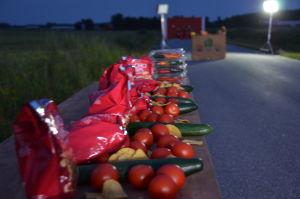 Hela vägen var fylld med nacho produkter, tomater, gurkor och chili.