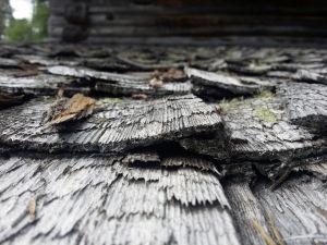 Myllykosken myllyn kauniisti harmaantuneet kattopäreet