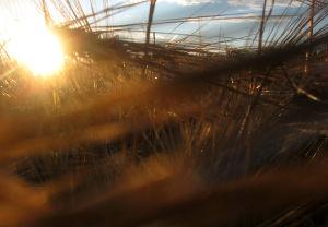 Auringonlasku ohrapellossa