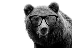 arviointi, määräajoin, valtionosuusuudistus, kulttuuriVOS, vos, karhu, rillit