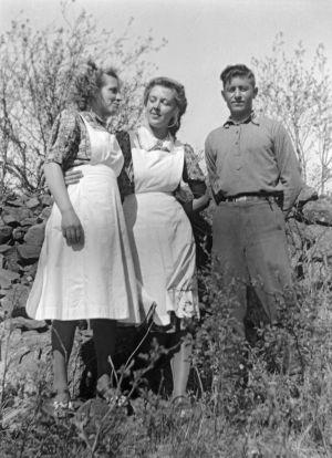 """Sisko, Helena ja Aliosha (Tscilingarjan)"". (1941)"