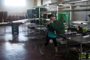Monica jobbar för Golden Green och är nöjd med jobbet.