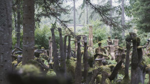 En grupp mossbelupna statyer i jogapositioner inne i en skog.