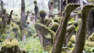 Mossiga statyer i olika jogapositioner mitt i en skog.