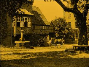 Maalaisidylliä elokuvassa Nosferatu
