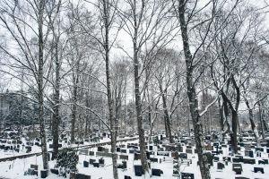 Hietaniemen hautausmaan hautakiviä ja puita talvella.