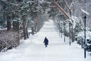 Nainen kävelee Hietaniemen hautausmaan leveällä keskikäytävällä lumen keskellä.