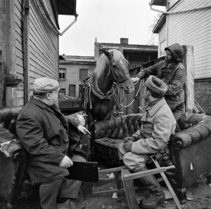 Ohjaaja Matti Tapio työssä. Tunnistamattomia näyttelijöitä, kuvauksissa käytetty hevonen tv-draamassa Lennu (1967).