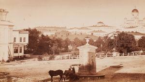 Den gamla brunnen på torget vid Skillnaden på 1860-talet.