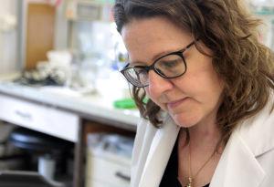 Professor Ritva Tikkanen har återupptagit AGU-forskningen.