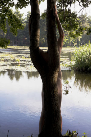 Puu, vettä, ihmishahmoa puun takana.