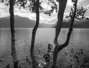 Kuvassa puita ja ihmisen jalka sekä vesistö.