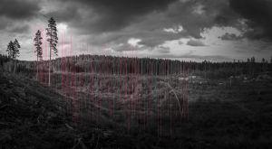 Mustavalkoisessa kuvassa metsää ja punaisia viivoja.