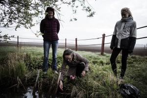 Naisia istuttamassa ruusua lammelle.
