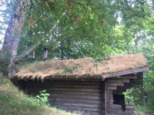 Pienen savusaunan katolla kasvaa heinää.