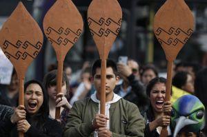 Miljöorganisationer och aktivister deltar i demonstrationer till stöd för ursprungsbefolkningen som drabbats av bränderna i Amazonas.