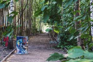 Tågspår som det växer träd mellan, samt en bänk och två tunnor täckta av graffitimålning. Skuggigt, spåren leder mot ljuset.