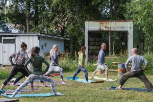 Grupp människor utövar yoga på en gräsmatta.