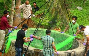 Hälsoexperter jagar fladdermöss i Kerala i Indien.