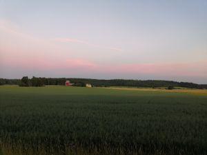 Peltomaisema, kaukana taustalla talo ja lato