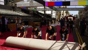arbetare rullar ut den röda mattan inför oscarsgalan 2015