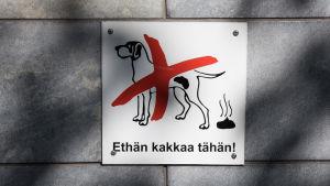 Förbud mot bajsande hundar