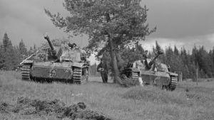 Rynnäkkötykit odottavat taistelukäskyä. Tienhaara / Hanhijoki 23. kesäkuuta 1944.