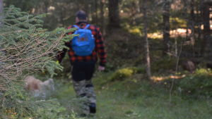 Tommy Holmblad på skogspromenad med hunden Bamse.